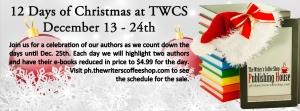 Banner-12-Days-Christmas-Sale